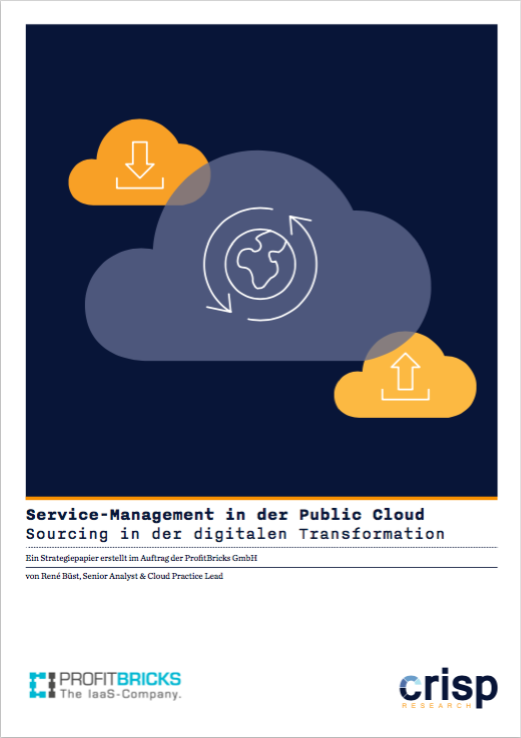 Analyst Strategy Paper: Service-Management in der Public Cloud